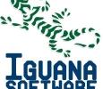 Iguana Software l Technical Support Miami