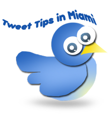 twitter-bird-jimmy SEO miami illustration web design, social media miami, tampa, hialeah facebook twitter